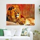 Lion S Love  Art Poster Print  24x18 inch