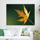 Maple Leaf  Art Poster Print  24x18 inch