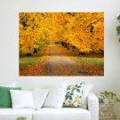 Yellow Fall  Art Poster Print  24x18 inch