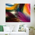 Multi Color Feathers  Art Poster Print  24x18 inch