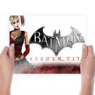 Batman Arkham City Harley Quinn  Art Poster Print  24x18 inch