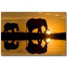 Elephants Sunset Africa Wild Animals Nature Poster 32x24