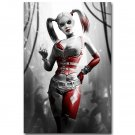 Harley Quinn Batman Arkham City Origins Video Game Poster 32x24