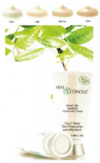 Heal and Conceal