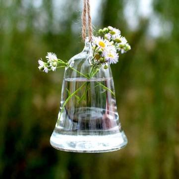 Bell Shape Hanging Glass Vase Hydroponic Plants Container