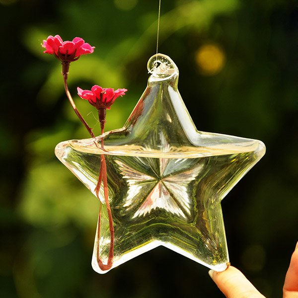 Lucky Star Shape Glass Flower Vase Hydroponic Plant Container