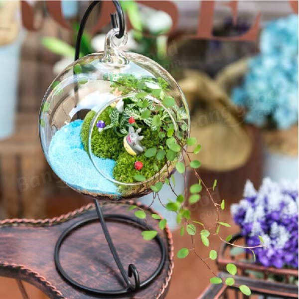 Ball pattern Hanging Glass Vase Micro Landscape!
