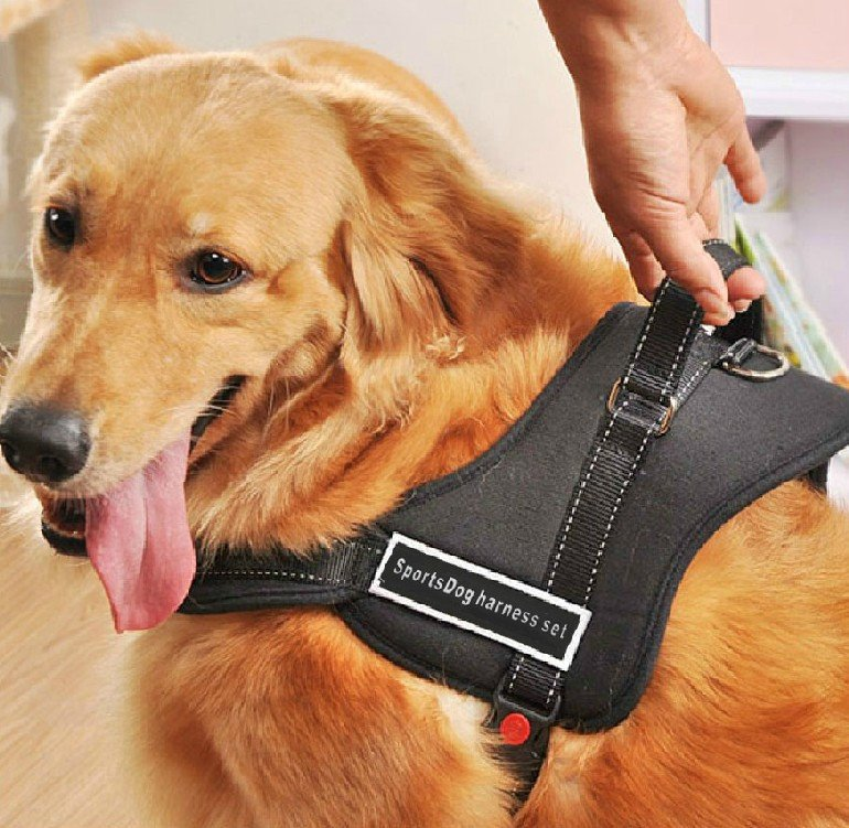 Stylish Sport Nylon Pet Dogs K9 Pulling Training Harness