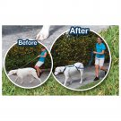 6 ft Anti Pulling Training Dog Leash - 2 Pcs
