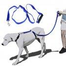 6 ft Anti Pulling Training Dog Leash - 6 ft