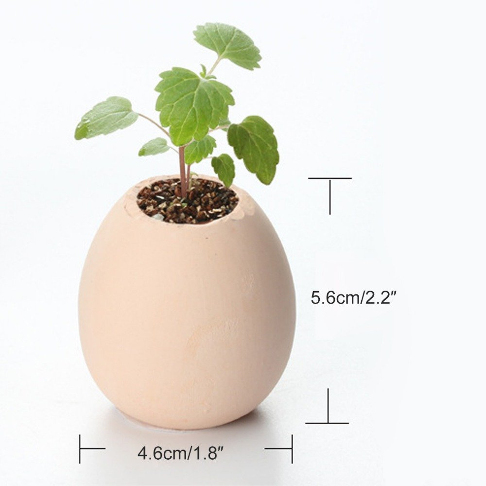 Lucky Egg Pot Plant EGGLING CRACK & GROW! - Mint, Basil, Wild Strawberry