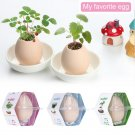 3 Pc Set!  Lucky Egg Pot Plant EGGLING CRACK & GROW! -  Mint/ Basil/Wild Strawberry