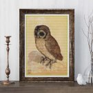 The Brown Owl Cross Stitch KIT by Albrecht Durer