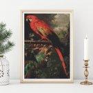 A Scarlet Macaw in a Landscape Cross Stitch Chart by Jakob Bogdany