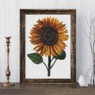 Sunflower Cross Stitch Chart by Daniel Froesch