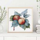 Apricots Cross Stitch Chart by Pierre-Joseph Redouté