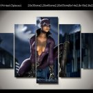 Catwoman Movie 5pc Framed Canvas Oil Painting Wall Decor  HD 2 Superhero
