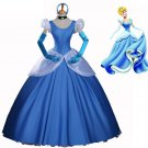 Cinderella Princess Character Costume Dress Adult Custom Design