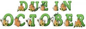 DUE in OCTOBER, pumpkin harvest  -- MATERNITY shirt, (2xLarge or 3xLarge)