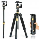 New Light Q555 professional SLR camera +Movie tripod Portable tripod stand