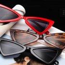 Free shipping Triangle cat eye Women Wear Sunglasses 2018
