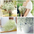 24 X Gypsophila Baby's Breath Artificial Fake Silk Flowers Plant Home Wedding Decoration(HT-54986)