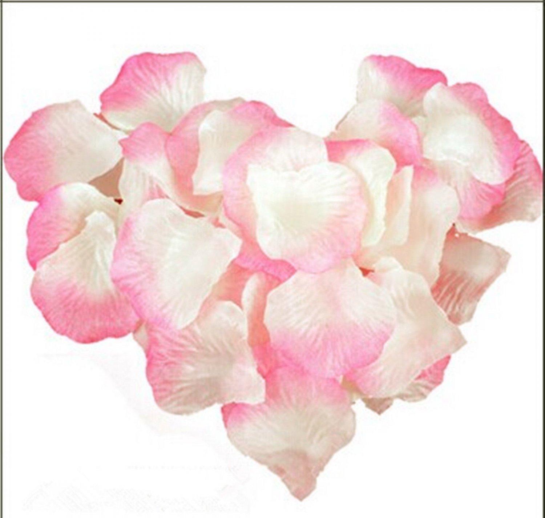 1000pcs Beige Pink Color Silk Flower Rose Petals Wedding Party Decorations(360966313441)