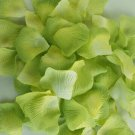 1000pcs Green Rice White Color Silk Flower Rose Petals Wedding Party Decorations(360966313441)