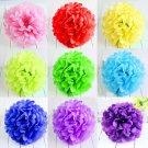 2 Pcs White 10'' Wedding Party Home Birthday Tissue Paper Pom Poms Flower Balls Décor db