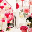 2 Pcs Red 10'' Wedding Party Home Birthday Tissue Paper Pom Poms Flower Balls Décor db