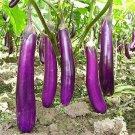Eggplant Seeds 100 Seeds