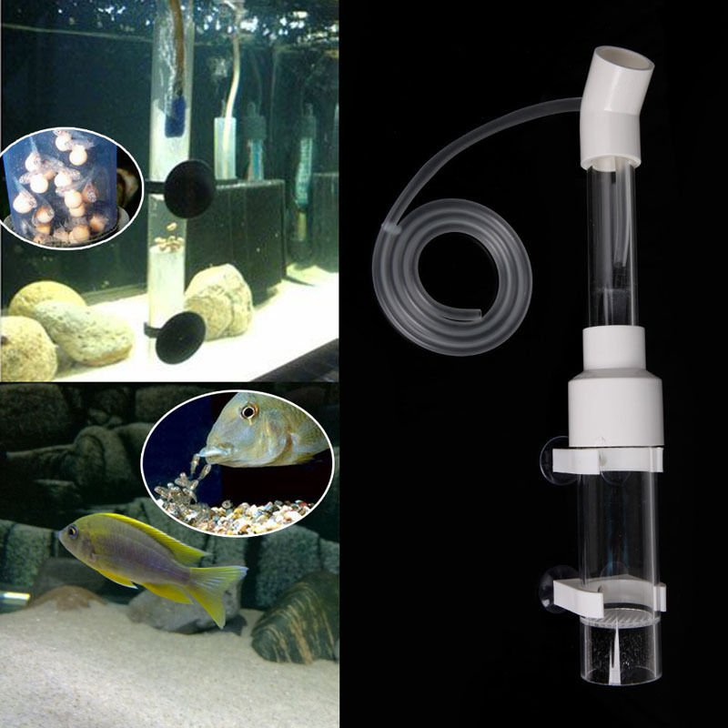 Aquarium Cichlids Tumbler Incubator Fish Hatchery Eggs Instead Mouth-Brooding dbb