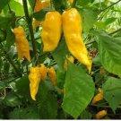 15 Yellow Ghost Pepper Bhut Jolokia seeds Chili seeds