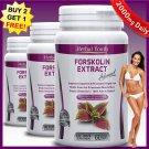 2000mg Daily FORSKOLIN PILLS Coleus Forskohlii EXTRACT Diet Standardized 20% BB