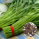 100Pcs Water Kang Spinach Seeds Organic Green Spinach Seeds