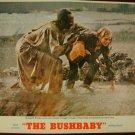 THE BUSHBABY Margaret Brooks Louis Gossett Jr. Original Lobby Card! #?
