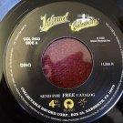 DINO I Like It / Summertime Girls 45 rpm NEAR MINT
