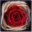 Eternal Life Flowers, Preserved Flowers Red Rose birthday Wedding day Gift Box Set