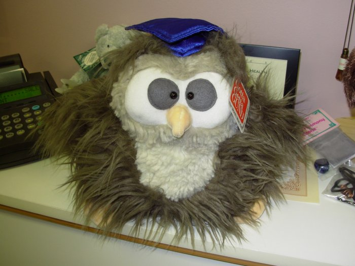 GUND ABACUS GRADUATION GIFT LOOK WHO'S GRADUATING PLUSH STUFFED ANIMAL OWL NEW WITH ORIGINAL TAGS