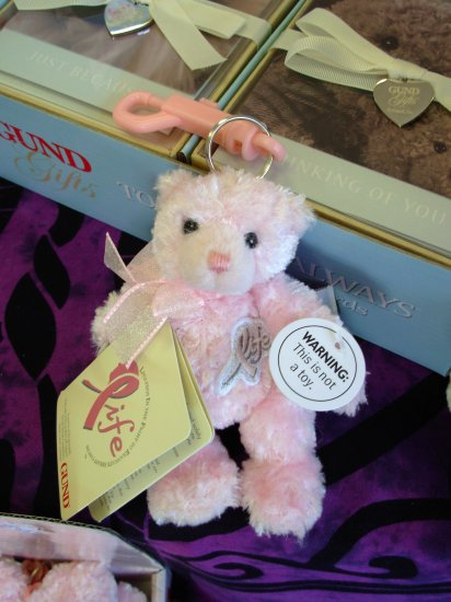 GUND PINK LIFE BEAR CLIP VAL SKINNER BREAST CANCER RESEARCH NEW PLUSH STUFFED BEAR