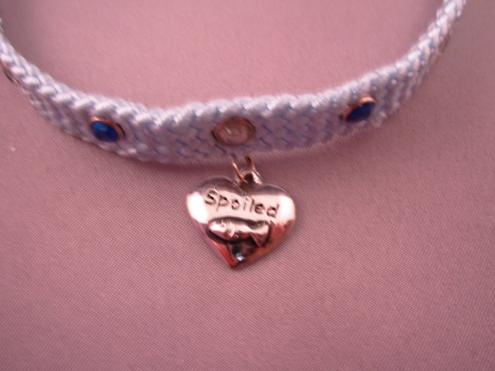 DOG OR CAT COLLAR BLUE NYLON WEAVE BLUE AND WHITE CRYSTAL STUDS HEART CHARM SAYS SPOILED