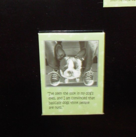 DOG MAGNET TALK TO DA PAW IVE SEEN THE LOOK IN MY DOGS EYES AND NEW REFRIGERATOR MAGNET HOME DECOR