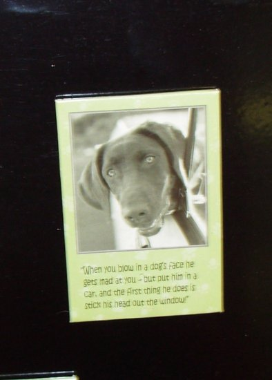 DOG MAGNET TALK TO DA PAW WHEN YOU BLOW IN A DOGS FACE HE NEW REFRIGERATOR MAGNET HOME DECOR
