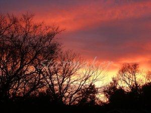 Fire In The Sky - Original Fine Art Photography
