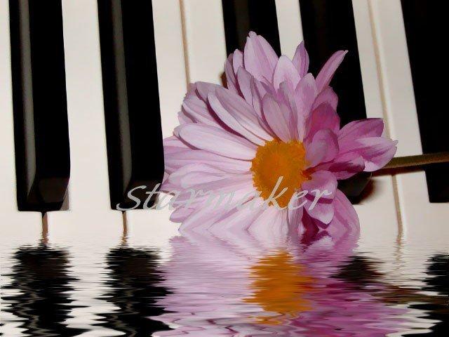 Sounds of Nature - Oriiginal Award-Winning Fine Art Photograph