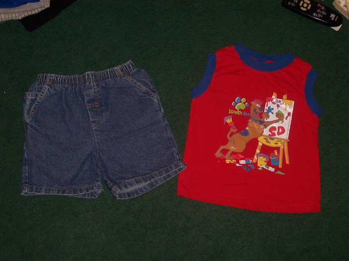 Cute Boys Shorts Outfit Size 4T