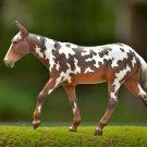 Breyer Horse Buckeye New in box