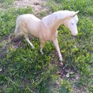Peter Stone pony