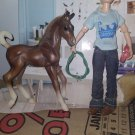 Breyer classic doll and filly