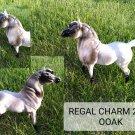 Hartland OOAK Regal Arabian